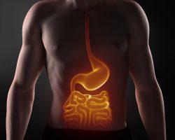 As doenças do aparelho digestivo têm cura e prevenção.